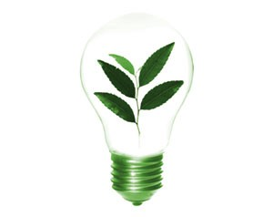 Modula Green